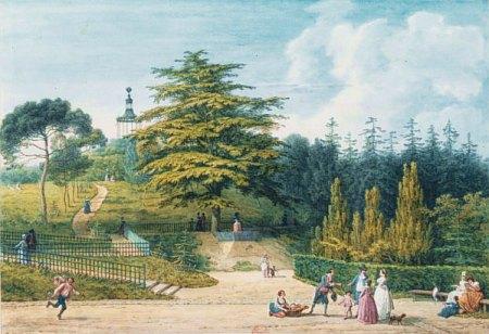 Jardin des Plantes 'twin'